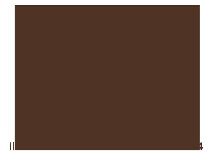 festival_chocolate_2014