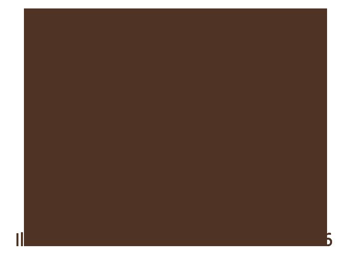 festival_chocolate_2016